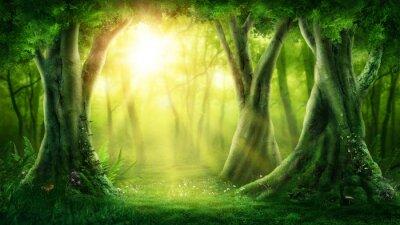 Plakat Mroczny magiczny las
