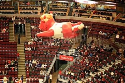 Plakat Nadmuchiwany balon Benny Bull, powszechnie znany jako Benny, oficjalna maskotka z Chicago Bulls w National Basketball Association, unoszące się nad NBA United Center, Chicago, USA podjęta w dniu 11 kw