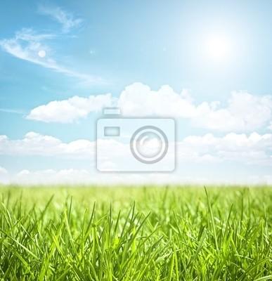 Plakat niebo i trawa