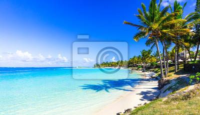 Plakat niesamowite krajobrazy tropikalnej plaży. Wyspa Mauritius, klacz Bel