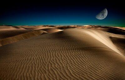Plakat Noc na pustyni
