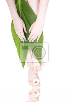 Plakat nogi i ręce z płatkami