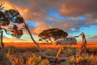 Plakat Nullarbor Plain, Australia
