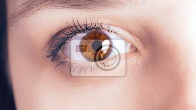 Oczy kobiet bez makijażu i makijażu, z soczewką na gałce ocznej. Zdjęcie makro oczu