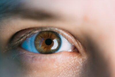 Oczy kobiet bez makijażu i makijażu, z soczewką na gałce ocznej. Zdjęcie makro oczy