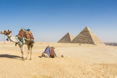 Plakat Ogólny widok piramid w Gizie, Egipt