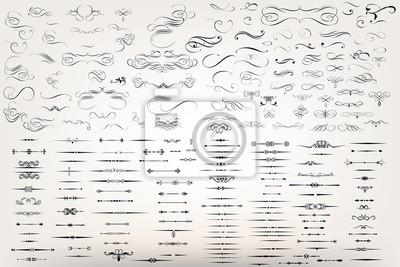 Plakat Ogromny zestaw lub kolekcja filigranu wektor kwitnie do projektowania