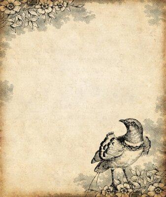 Plakat Oiseau de paradis