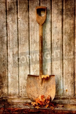 Plakat old fashion spade with dry leaves against an old wooden wall.