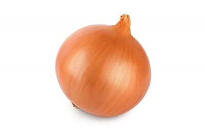 Plakat One yellow onion isolated on white background close up