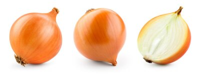 Plakat Onion bulbs isolated. Whole golden onion bulb and a half on white background. Onion set. Full depth of field. With clipping path.