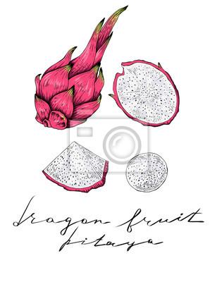 Plakat Owoce Draroin, wyciągnąć rękę, pełne i plastry, wektor