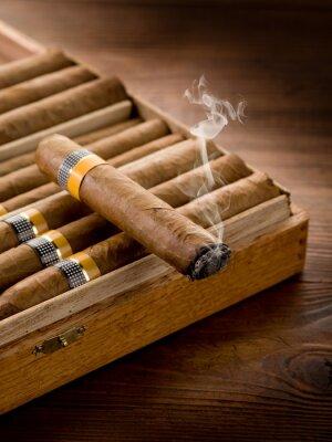 Plakat paląc kubańskie cygara na polu na tle drewna