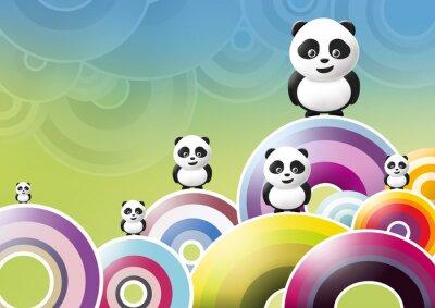Plakat Panda (sfondo multicolore 3)
