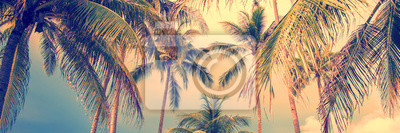 Plakat Panoramic palm trees background, vintage style process