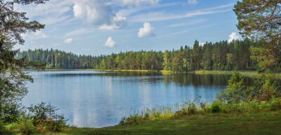 Plakat Panoramic view of beautiful forest lake in Russia.