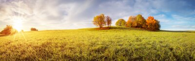 Plakat Panoramic view of the autumnal field on the sunny morning.