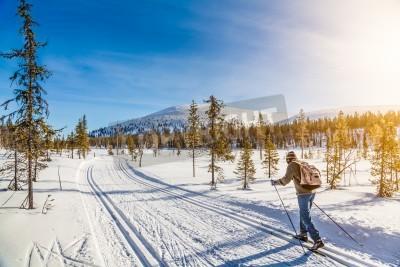 Plakat Panoramiczny widok mężczyzna osoby narciarstwa biegowego w Skandynawii w złote światło wieczorem o zachodzie słońca