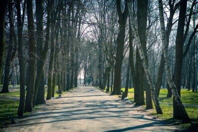 Plakat park