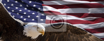 Plakat patriotic eagle taking wing in front of US flag