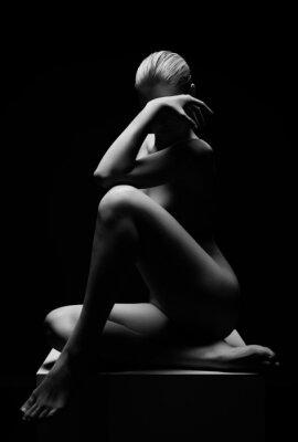 Plakat Piękna dziewczyna stwarzające nagi