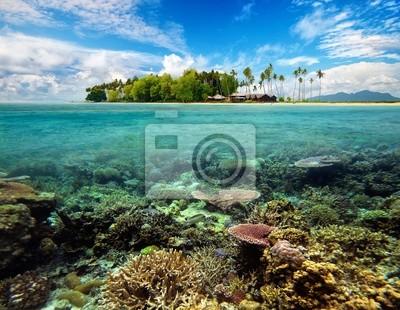 Plakat Piękna tropikalna Coral Island