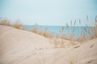 Plakat Piękne białe wydmy na plaży morza