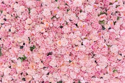 Plakat Piękne tło różowe kwiaty