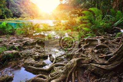Piękny Cascades National Park w Gwatemala Semuc Champey na su