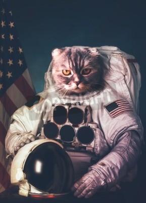 Plakat Piękny kot astronautą.