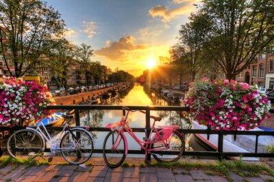 Plakat Piękny wschód słońca nad Amsterdam, Holandia, z kwiatami i rowerów na moście na wiosnę