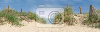 Plakat piękny zachód słońca nad morzem, wydma nad oceanem z trawami i pługami do drewna