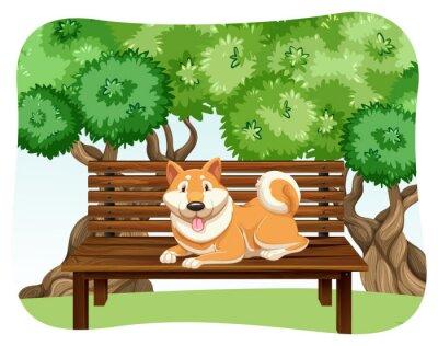 Plakat Pies na ławce