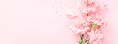 Plakat Pink carnations on pink background. Banner with flowers in pastel colours.