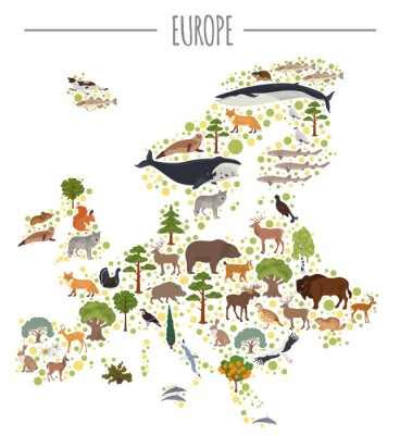 Plakat Płaskie elementy europejskiej struktury flory i fauny. Zwierzęta, ptaki i życie morskie na białym duży zestaw. Zbuduj swoją własną kolekcję infografiki geografii