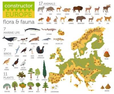 Plakat Płaskie elementy konstrukcji konstrukcyjnych flory i fauny. Zwierząt, ptaków i życia morskiego samodzielnie na biały duży zestaw. Zbuduj własną kolekcję infografiki geografii