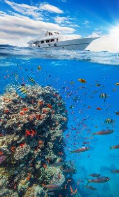 Plakat Podwodne rafy koralowej z powierzchni wody i horyzontu