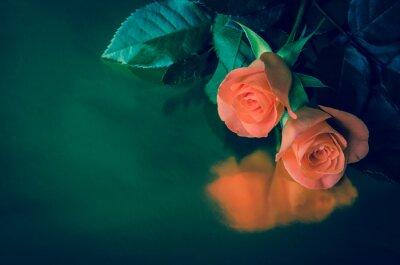 Plakat Pogrzeb karty z róż