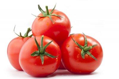 Plakat Pomidory