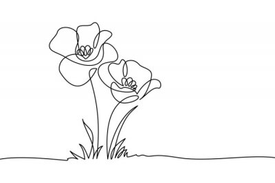 Plakat Poppy flowers in continuous line art drawing style. Doodle floral border with two flowers blooming among grass. Minimalist black linear design isolated on white background. Vector illustration