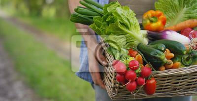 Plakat Portret szczęśliwy młodych rolnik gospodarstwa świeżych warzyw w koszyku. Na tle natury Pojęcie biologicznych, bio produktów, bio ekologia, uprawiane własnymi rękami, wegetarianami, sałatkami zdrowymi