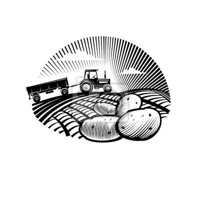 Potato przeciwko ciągnika rolniczego w polu, styl grawerowania