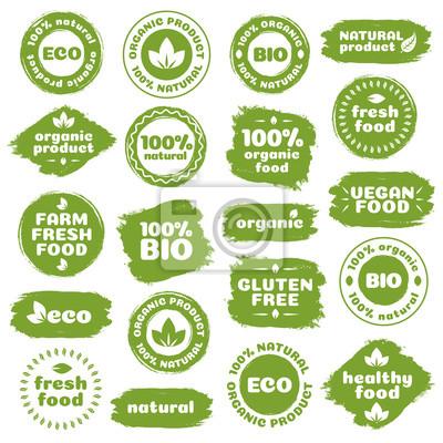 Plakat Produkt naturalny, zdrowa żywność, świeże, jedzenie, produkty organiczne, wegańskie, gospodarstwo świeża żywność, glutenu, bio i eko etykiet kształtów szablon akwarela na białym tle. Ilustracja wektor