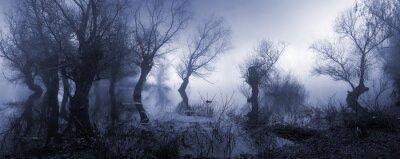 Plakat Przerażający krajobraz przedstawiający mglisty ciemne bagno jesienią.
