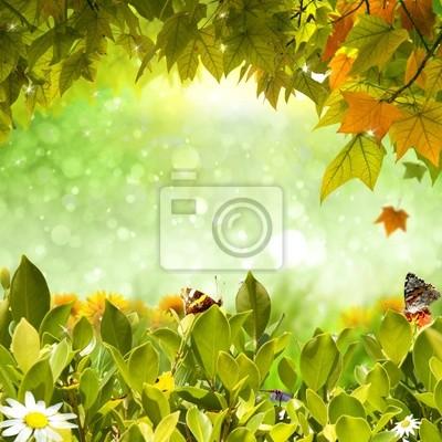 Plakat przyrodzie