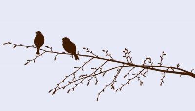 Plakat ptaki na gałązką