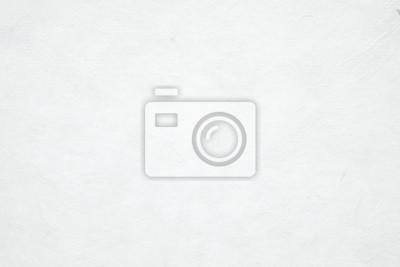 Plakat Puste tło białego papieru tekstury