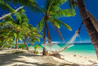 Plakat Pusty hamak w cieniu palm na tropikalnej Fidżi