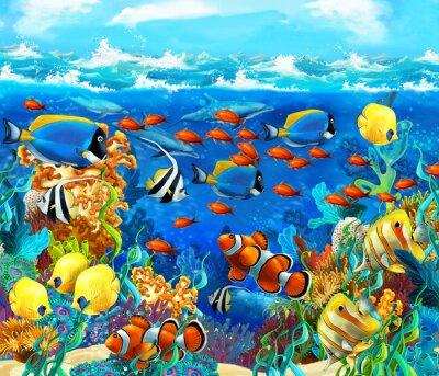 Plakat Rafa koralowa - ilustracja dla dzieci