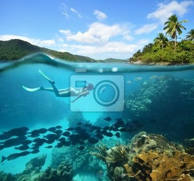 Rafy koralowej z dużą ilością ryb i kobieta